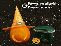 Image of pumpkin and food recycling box