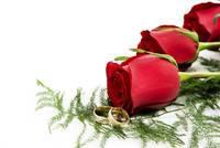 Image of roses and wedding rings