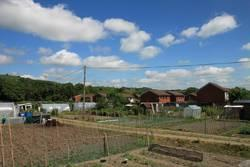 Newtown Allotment Gardens