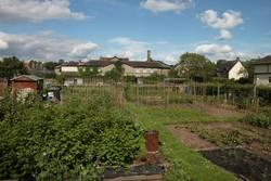 Hay on Wye allotment gardens