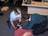Image of Biker Down training demonstration
