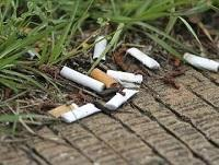 Image of some cigarette ends