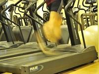 Image of a running machine