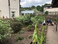 Image of Ystradgynlais library garden