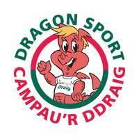 Image of the Dragon Sport logo