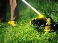 Image of a grass strimmer