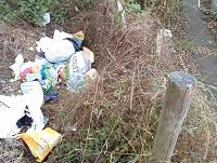 Image of fly-tipping found in Newtown